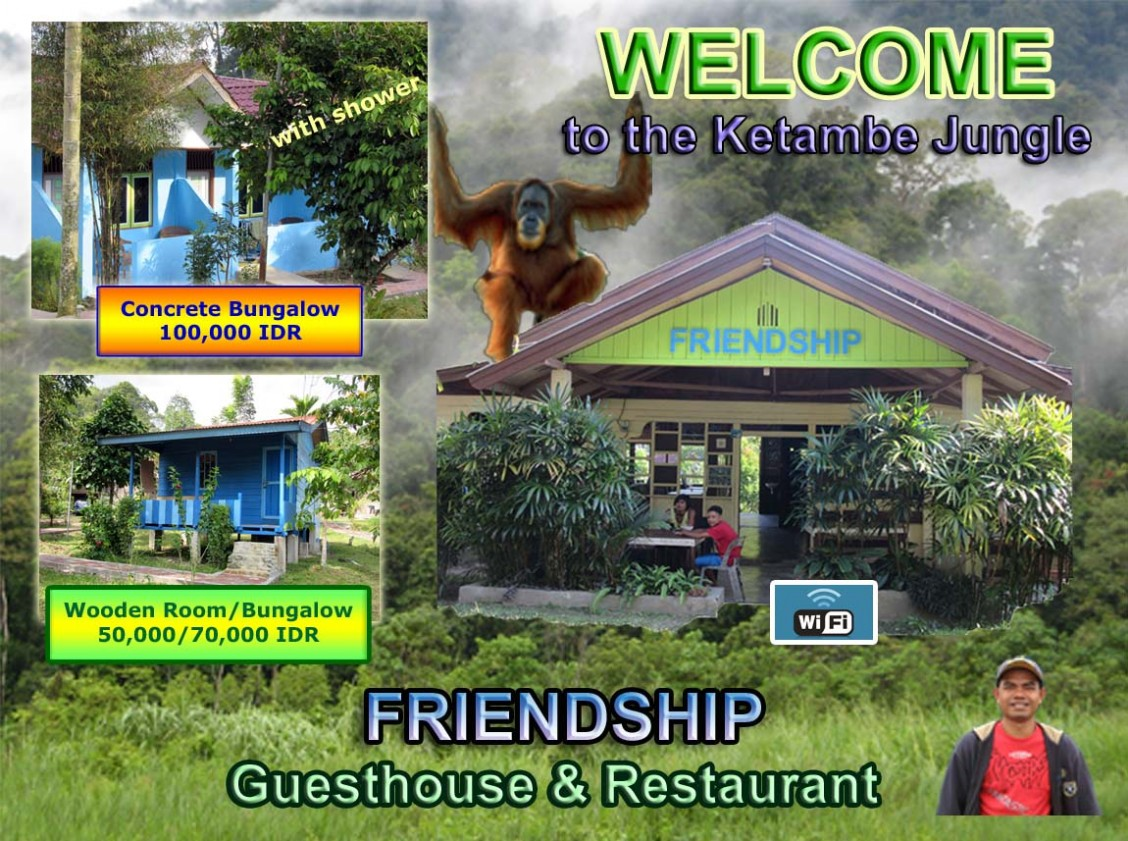 Friendship Guesthouse - Home